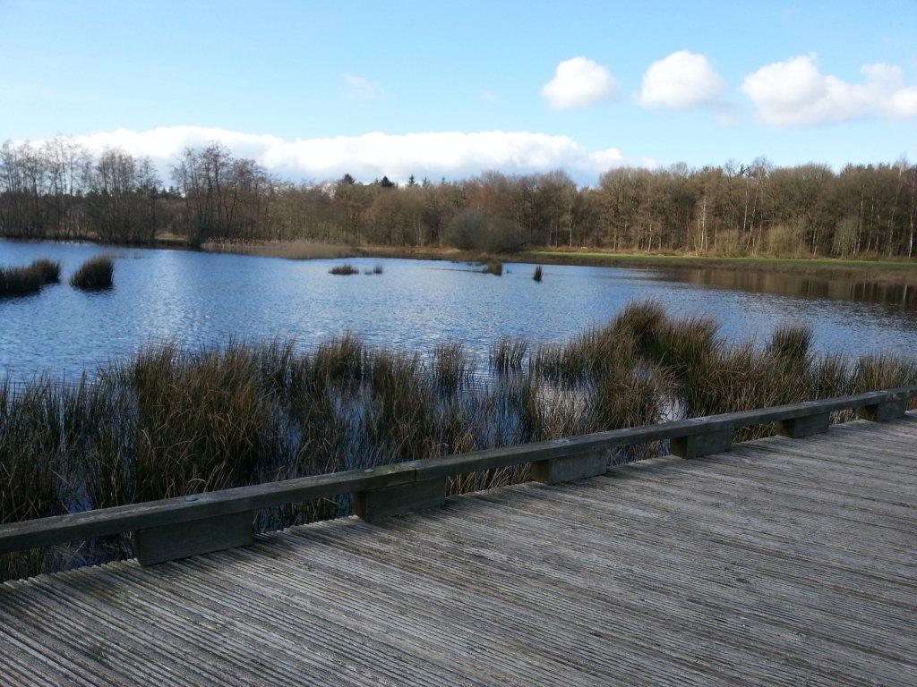 Nationaal Park Dwingelderveld staat vooral bekend vanwege de grote, stille heide