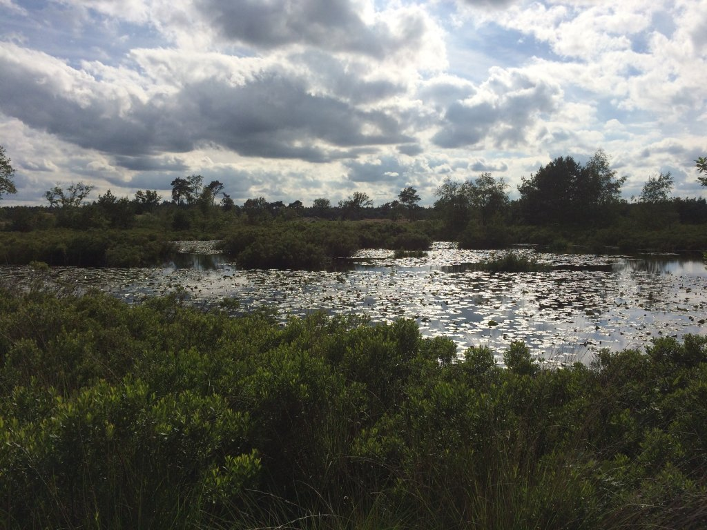 Malpi, a beautiful natur protected nearby Borkel en Schaft, nice to walk or to bike