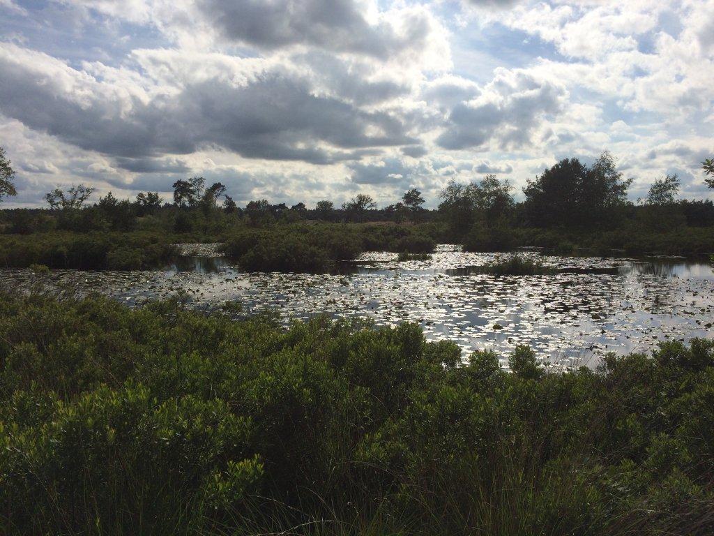 Malpi, ein sehr schönes Naturgebiet, herrlich zum wandern oder mit dem Fahrrad