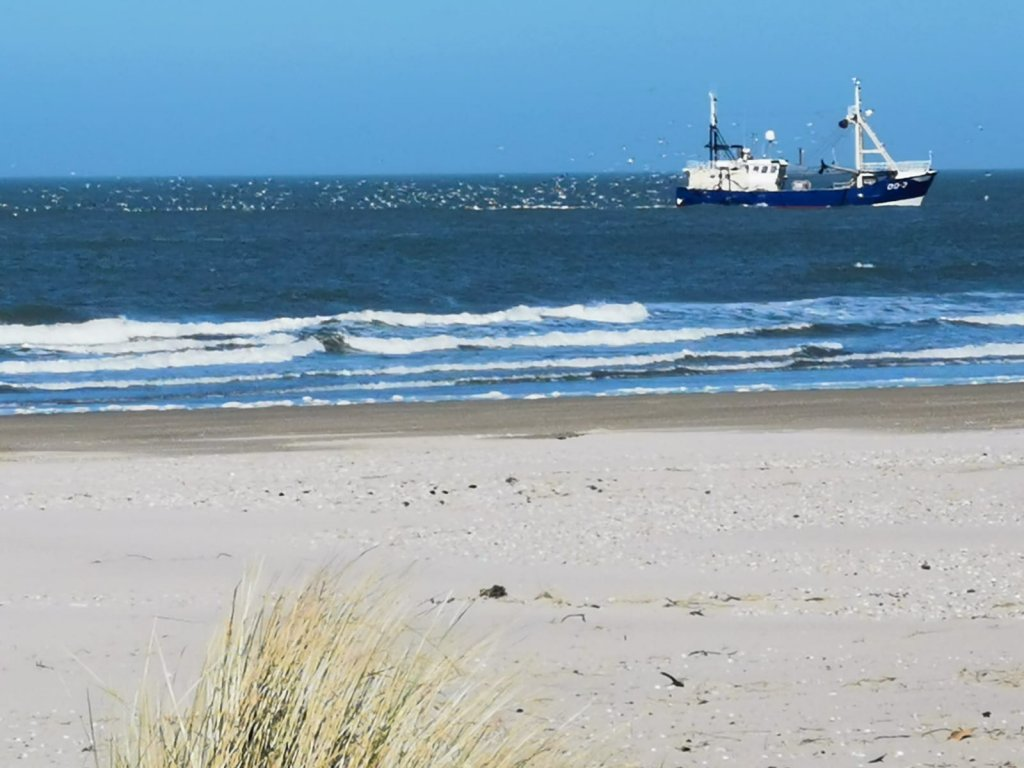 Strand in Ouddorp